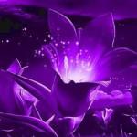 Фиолетовые круги под глазами — не нонсенс в современном мире