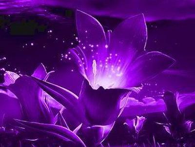 Фиолетовые круги под глазами: причины, лечение народными средствами
