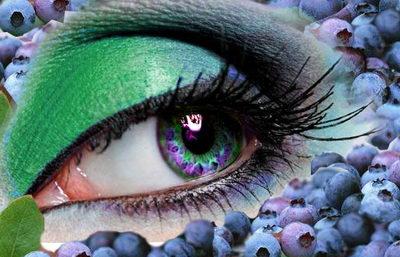Черника для профилактики зрения