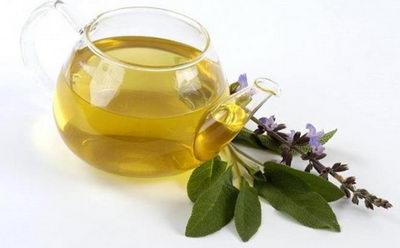 Целебные свойства чайного шалфея