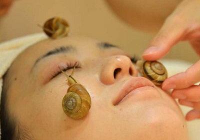 Улиткотерапия или экзотическая косметология