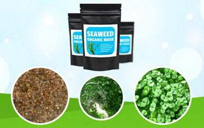 Состав Seaweed Organic Mask