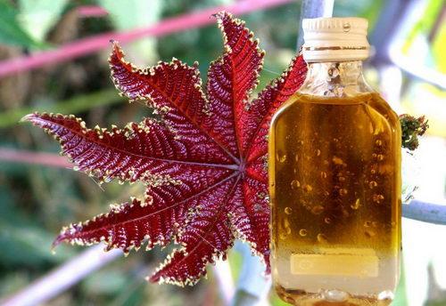 Касторовое эфирное масло