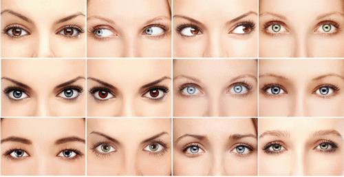 Форма и цвет глаз