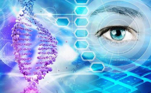 Глаз и ДНК